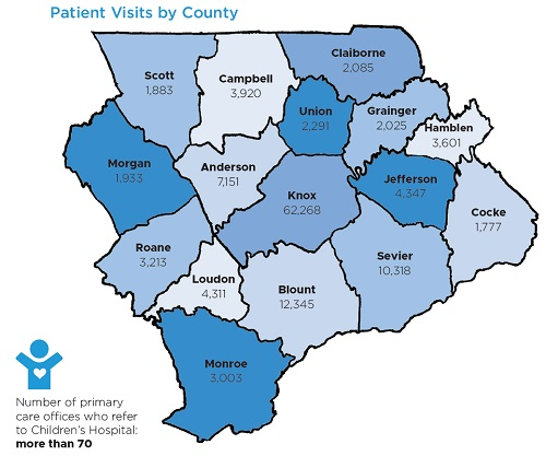 Patient Visits By County